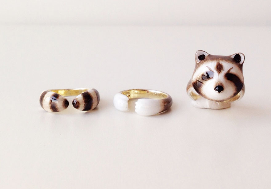 raccoon rings