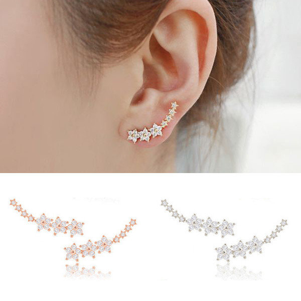 zircon earrings